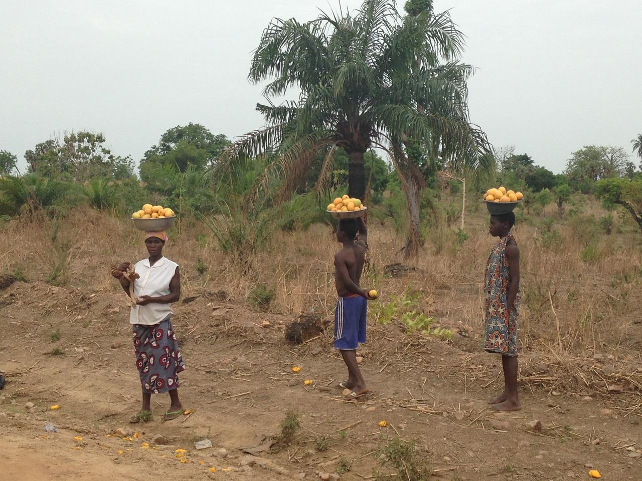 Jus naturels au Togo