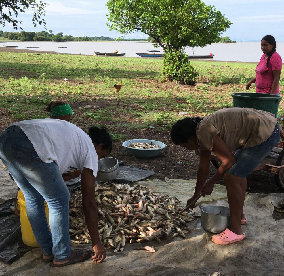 Pêche artisanale - Colombie